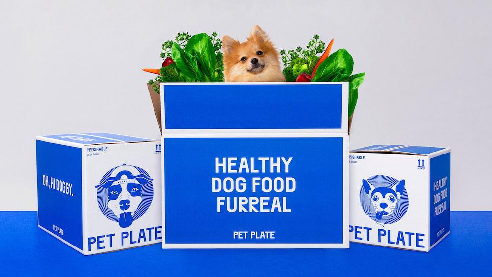 宠物鲜粮品牌:Pet Plate 的品牌视觉重塑 | 灵感漫游