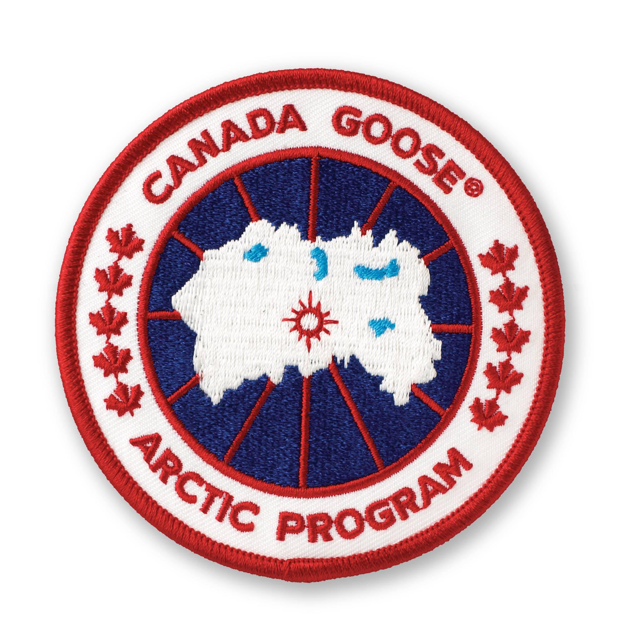 加拿大鹅 Canada Goose